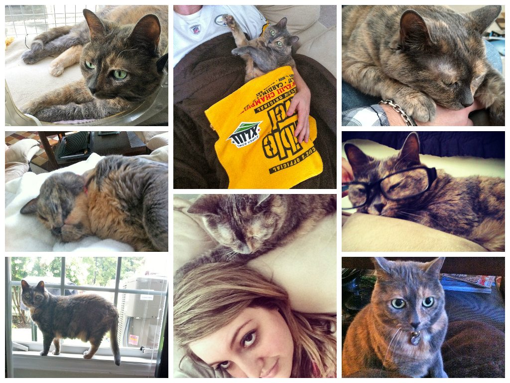 Taby Collage