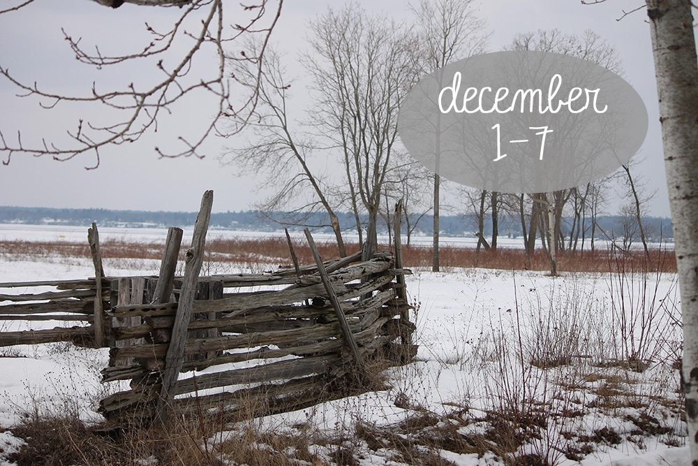 December-1-7